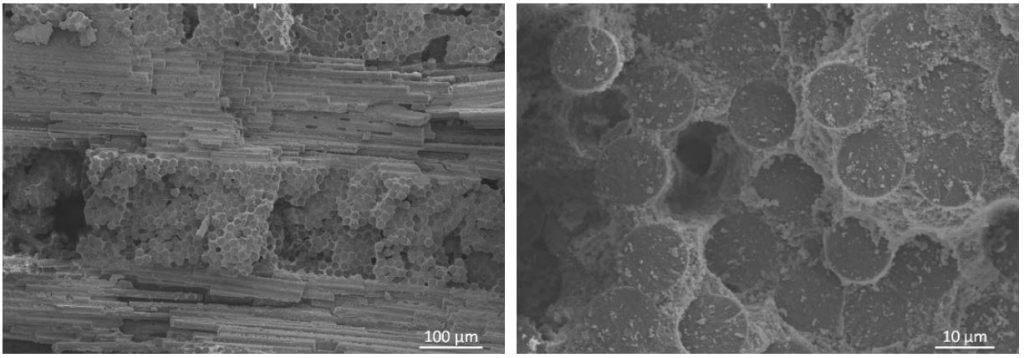Figure 5: SEM Images of EF-11 OxOx CMC (1,500 Denier)